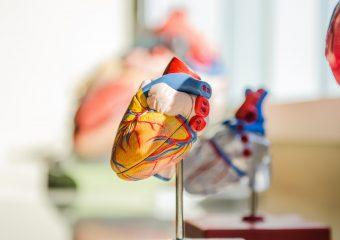 Cardiac Department